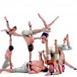 Sieben Akrobaten in verschiedenen Positionen vor weißem Hintergrund.