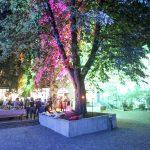 Großer bunt beleuchteter Baum im Innenhof der Praterinsel während einem Firmenevent.